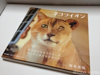 『猫はLionなのか! 写真集「ネコライオン」購入』
