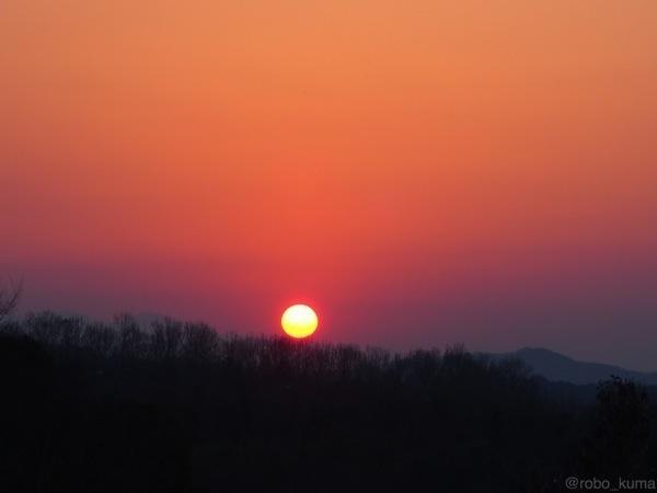 夕日。GIF。