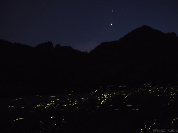 ホタルの光、光の川。[ライブコンポジットで蛍を撮影]