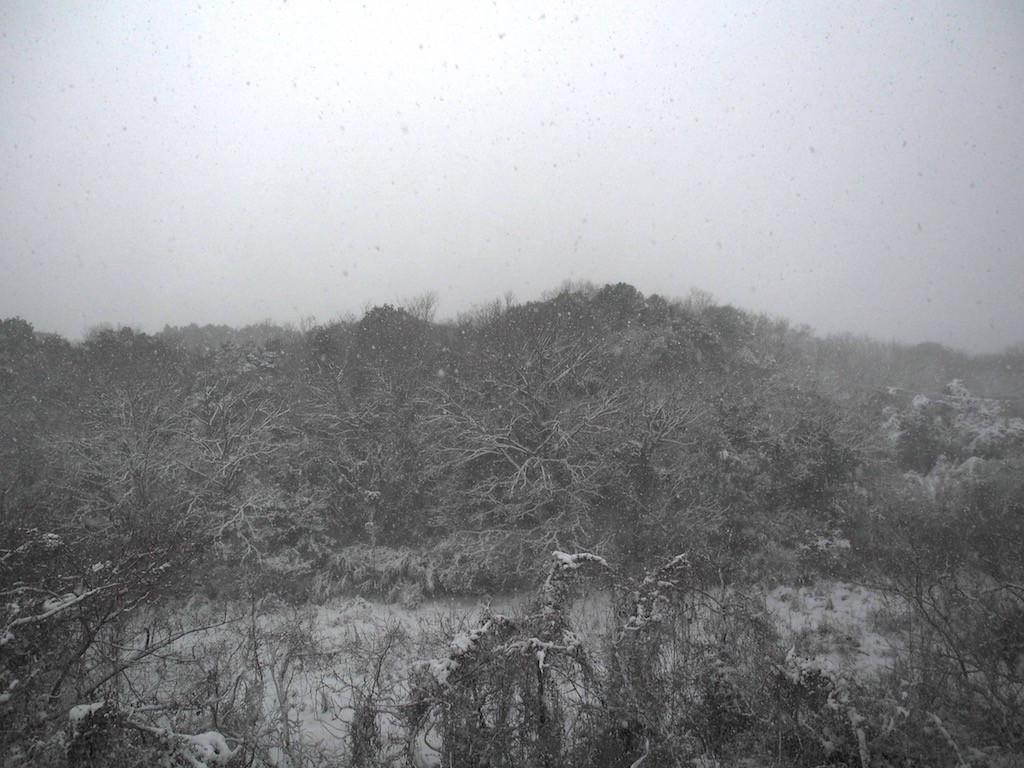 大雪の1日。そして満月。そして色々と凍結(^^;)