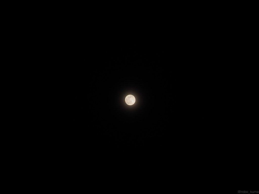 「ピンクムーン」と「こと座流星群」。