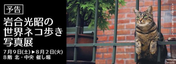 【イベント】『岩合光明の世界ネコ歩き写真展』が、トキハ大分本店で開催です(੭ु ˃̶͈̀ ω ˂̶͈́)੭ु⁾⁾