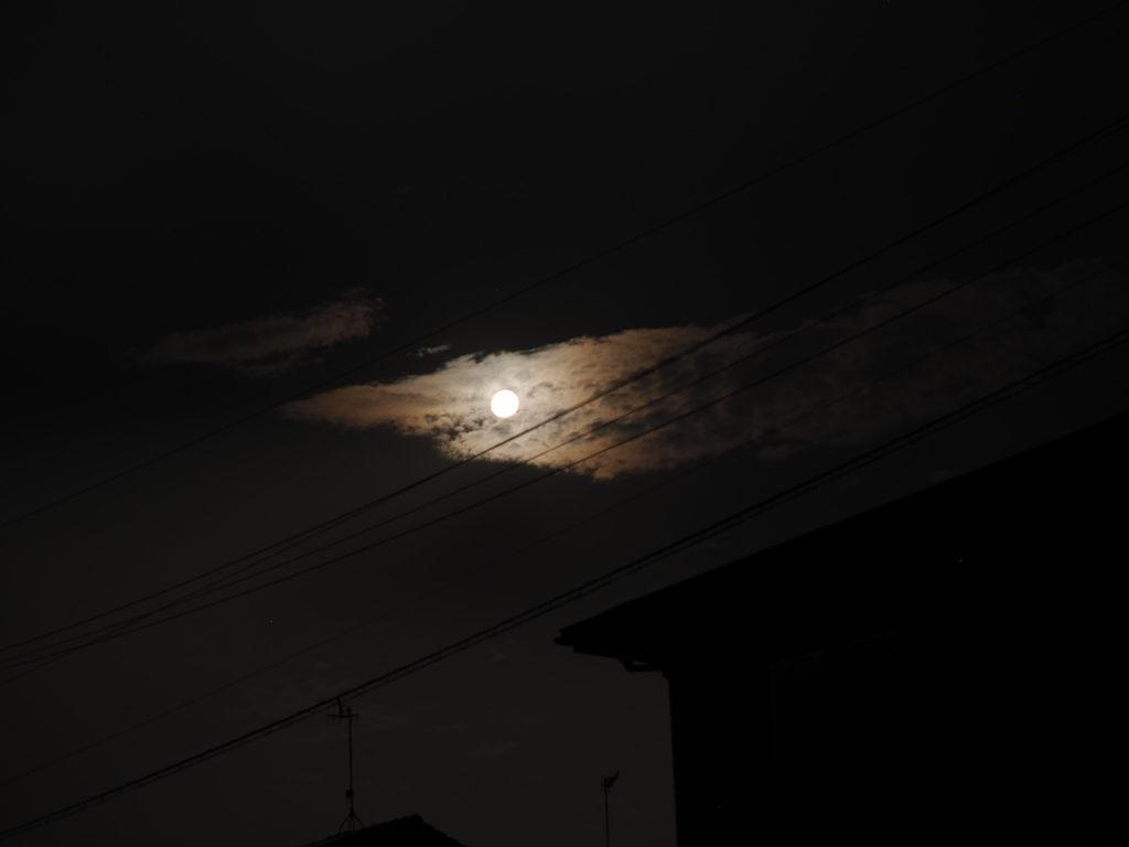 【写真】満月雲。夜空の魚。