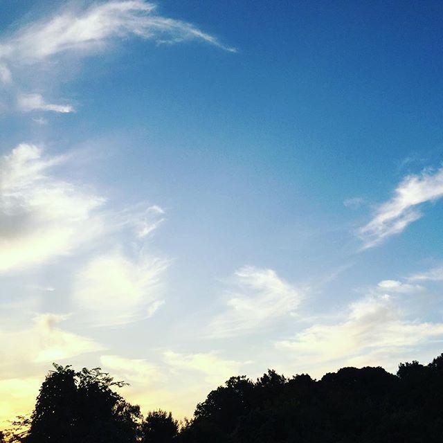 久々の青空と夕日
