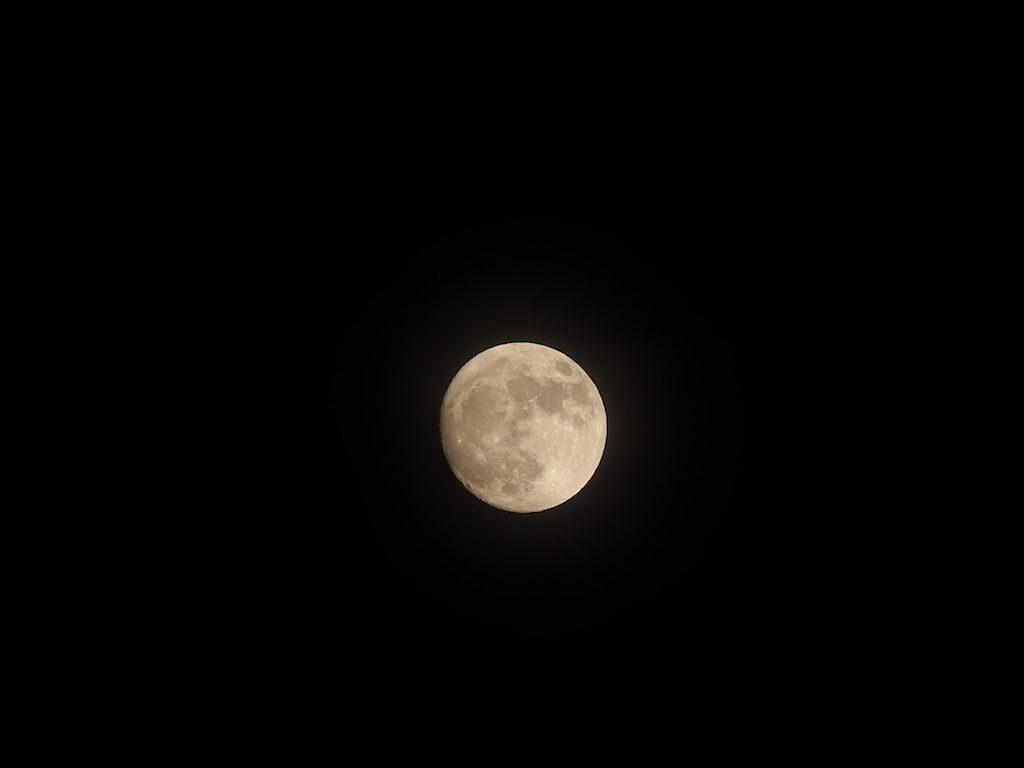 【天体観測】14日はスーパームーン。68年ぶりの巨大な満月です。
