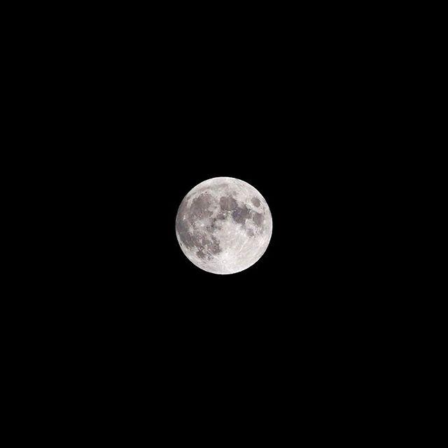 満月。月齢14.1。(2017年2月11日午前0時48分) 雪雲がキレて美しい満月です。しかし寒すぎる。 #満月