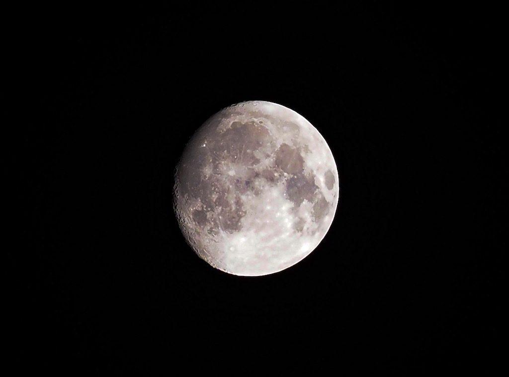 お月様がキレイだお。