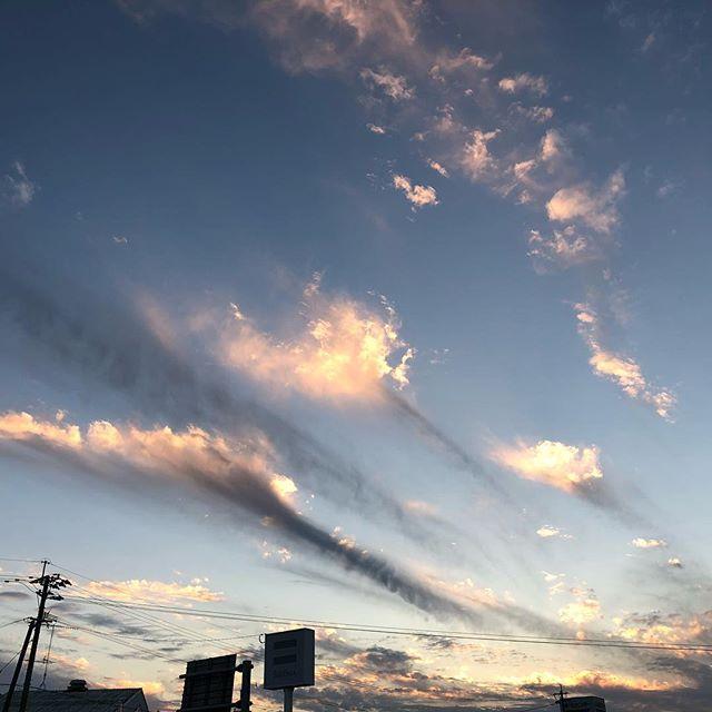 秋の冷たい風が心地よい夕暮れです。