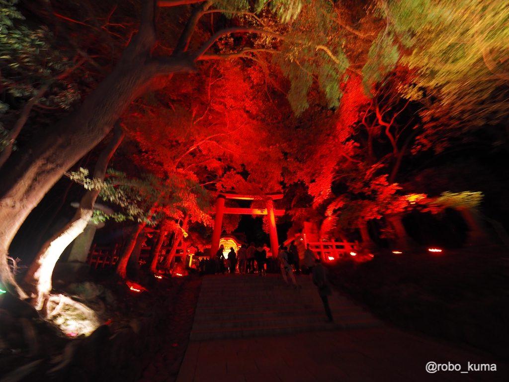 宇佐神宮を神秘的にライトアップ。チームラボ「宇佐神宮 光の祭 Art by teamLab」に行ってきました(*`・ω・)ゞ。