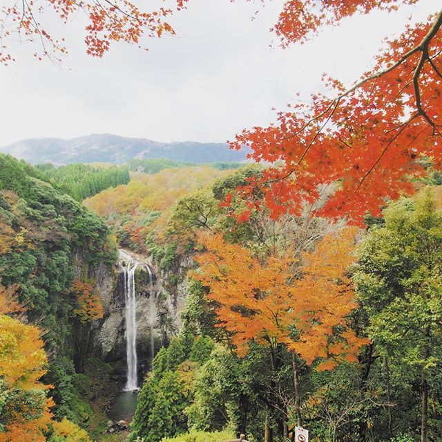 福貴野の滝と紅葉。 「OLYMPUS OM-D E-M1 + M.ZUIKO DIGITAL ED 7-14mm F2.8 PRO」にて撮影。