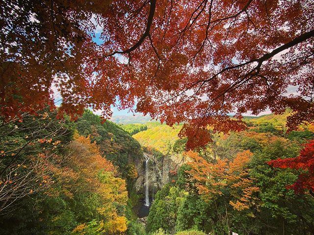 福貴野の滝と紅葉。(iPhone 11 Pro Max)