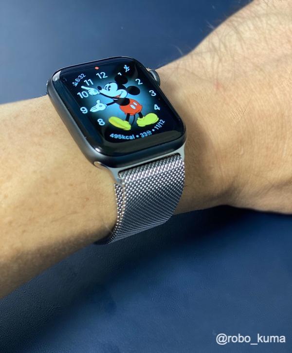 Apple Watch (44mm) ケース用シルバーミラネーゼループ購入。スペースグレイケースに装着しても見栄え良いです(*`・ω・)ゞ。でも、バンドの締め付けが緩みやすいので注意。