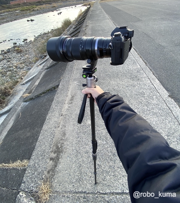 カメラの三脚を一脚にして鳥さん撮影にチャレンジ(*`・ω・)ゞ。