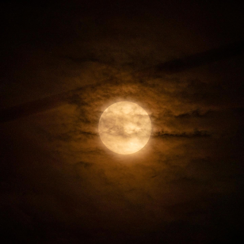 雲に隠れたストロベリームーン、2020年6月5日。(OLYMPUS OM-D E-M1 MARK II + M.ZUIKO ED40-150mm F2.8PRO + MC-20)