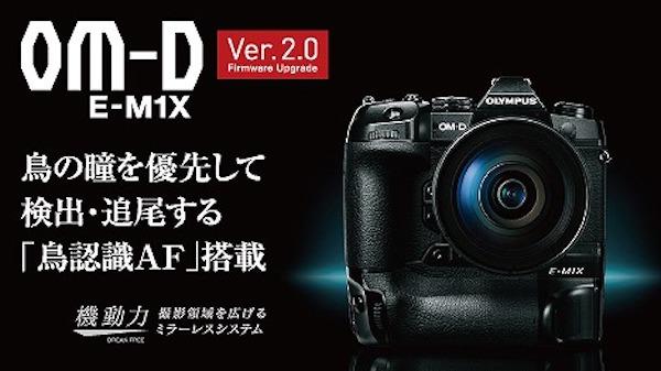 ミラーレス一眼カメラ「OLYMPUS OM-D E-M1X」がファームウェアVer.2.0で「鳥認識」が追加。そして何故か本体価格が下がっている・・・悪魔の誘惑。