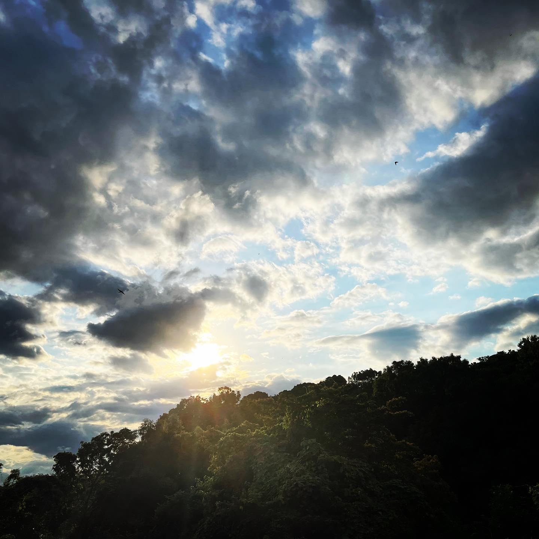 梅雨の通り雨のあと。(iPhone 12 Pro Max 広角)